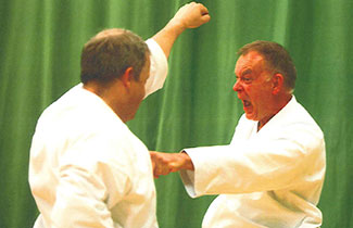 Sensei Martin training during the Course