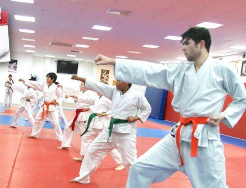 Next Kyu Grading on 4th April