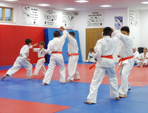Next Kyu Grading – 5th December 2017!